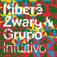 ITIBERE ZWARG / INTUITIVO (CD)