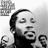 TOOTS & THE MAYTALS / IN THE DARK (LP)