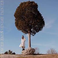 SPENCER ZAHN / SUNDAY PAINTER (LP)