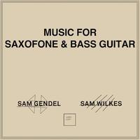 Sam Gendel , Sam Wilkes / Music For Saxofone & Bass Guitar(LP)