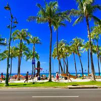 ISLANDER/アイランダーPhotography写真 『Hello, Waikiki 』2Lサイズ