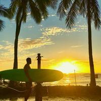 ISLANDER/アイランダーPhotography写真 『Surf All Days 』A4サイズ