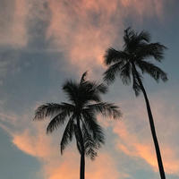 ISLANDER/アイランダーPhotography写真 『Breeze 』2Lサイズ
