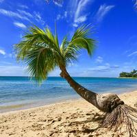 ISLANDER/アイランダーPhotography写真 『Love The Island 』2Lサイズ
