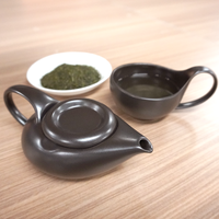 Simple&Modern瀬戸焼「茶師(急須・湯呑)」&深蒸し煎茶 おひとり様向けセット【品】