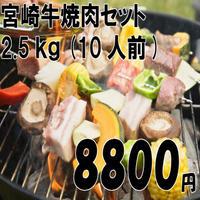 宮崎牛焼肉セット 2.5kg(10人前)#肉のながやま
