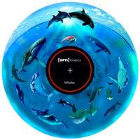 回転ディスク Track8*鯨とスイミング*