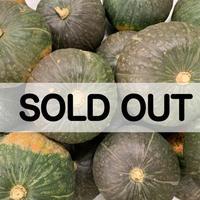農家のこだわり野菜 北海道産かぼちゃくりゆたか 3kg