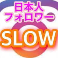 インスタグラム日本人フォロワー300人 (2週間コース)