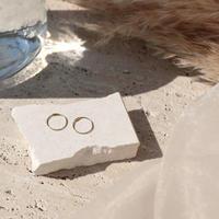 Halo hoop pierce (Small/2P) / Gold 18K