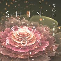 4th Single「SHINKARON」