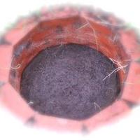 バイオダイナミック 調剤調合牛糞マリアトウーン樽堆肥BC 150坪以下