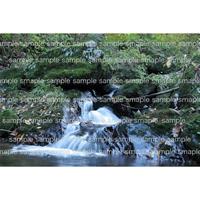 山の中の川  river in the mountain     デジタル写真データ digital photo data