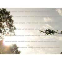空と太陽  デジタル写真データ digital photo data
