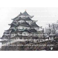 雪の名古屋城  Nagoya castle in snow   デジタル写真データ digital photo data
