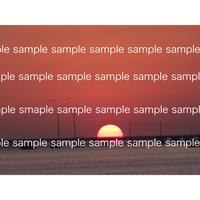 テキサスのメキシコ湾に浮かぶ太陽 Sunset in Gulf of Mexico デジタルフォトデータ digital photo data
