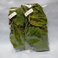 桑の葉10g