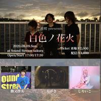 【8/9(Sun)】-ライブ配信チケット- 夜桜presents「白色ノ花火」