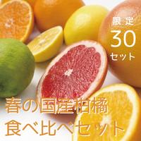 【数量限定】春の国産柑橘食べ比べお試しセット