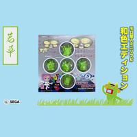 モロ星人 和色エディション「若草(わかくさ)」Traditional Green