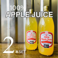 100%りんごジュース 1L 2本入り
