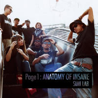 "SIMI LAB ""Page 1 : ANATOMY OF INSANE"""