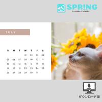 にゃんこ♡カレンダー (2020年7月 )