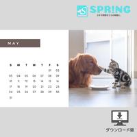 にゃんこ♡カレンダー (2020年5月 )