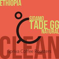 【クリーンな熟れた果実感!】エチオピア シダモG1 タデGG農園 ナチュラル 100g