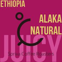 エチオピア・ALAKA農園・ナチュラル【熟れた果実のジューシーさ】