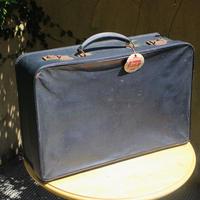 trip bag trunk
