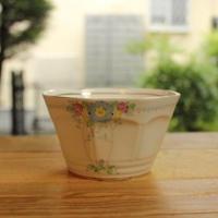 plant tuscan cafe bowl