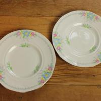 plant tuscan desert plate set B