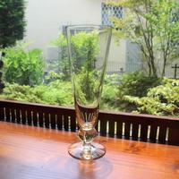 pilsner beer glass A