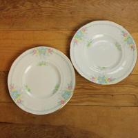 plant tuscan desert plate set A