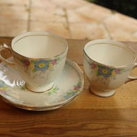 plant tuscan cup and saucer set A