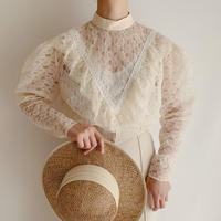 Euro Vintage Stand Collar Lace Blouse