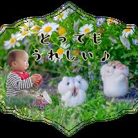 p011*LINEスタンプ・プレミアム【こびとの世界】画像8枚
