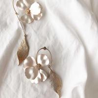 Anemone pierce