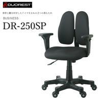 DUOREST デュオレスト オフィスチェア 可動肘 背もたれ 上下左右調節 ブラック DR-250SP 1ABK1 腰痛対策 姿勢サポート 体圧分散