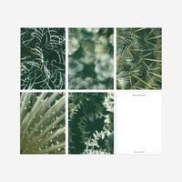 BIENVENUE STUDIOS〈SMALL PRINT COLLECTION_QUIET WATER〉(5PCS)