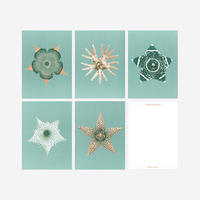 BIENVENUE STUDIOS〈SMALL PRINT COLLECTION_EPHEMERAL BLOOMING〉(5PCS)