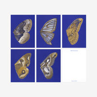 BIENVENUE STUDIOS〈SMALL PRINT COLLECTION_MOON FLUTTERING〉(5PCS)
