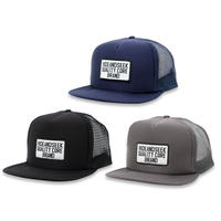 Mesh CAP(21ss)