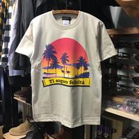 (ラルテ)RARETE Flamingo sunset フラミンゴ ビーチ 半袖 Tシャツ(SPEND/RUDE/スペンド/ルード風)