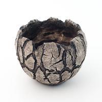 セキグチタカヒト 植木鉢 Opot (SS)W&B  2092503