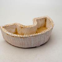 陶器製 多肉植物の欲しがる植木鉢 DCSc-8633ピンク