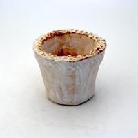 陶器製(2号ポット相当)多肉植物の欲しがる植木鉢 NSSS-8930
