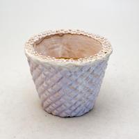 陶器製(2.5号ポット相当)多肉植物の欲しがる植木鉢 SMSc-9411パープル