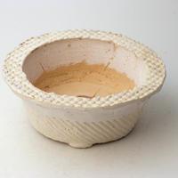 陶器製 多肉植物の欲しがる植木鉢 AQSScd - 9700イエロー